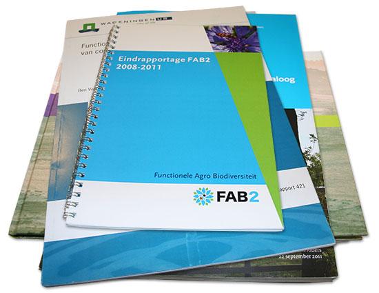 Eindrapportage FAB II