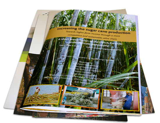 Increasing the sugar cane production