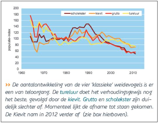 Deze grafiek uit Vogelbalans 2012 van Sovon toont wèl cijfers van voor 1990. Hij laat zien dat rond dat jaar de weidevogelstand inderdaad uitzonderlijk goed was. En hij heeft net als de recente CBS-grafiek een opvallend hoog startpunt. Denk je de eerste twee jaar weg, dan gaat de kievit vooruit en blijft er voor grutto, scholekster en tureluur een veel bescheidener daling over. Die zal goeddeels verklaard worden door de teruggang van de oppervlakte agrarisch land in 45 jaar